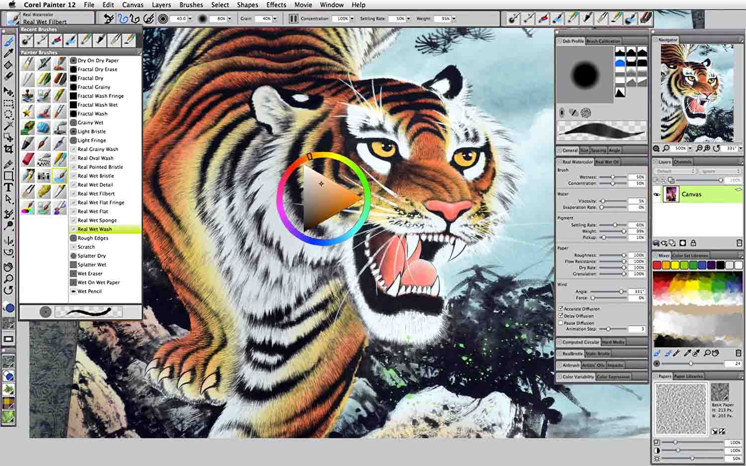 Corel Painter is a quality piece of drawing software, very much oriented to digital painting