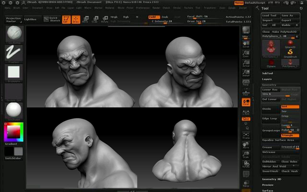 Zbrush, more than a 3D modeling program, it is a 3D sculpting program